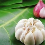Tránh thai tự nhiên nhờ…thực phẩm
