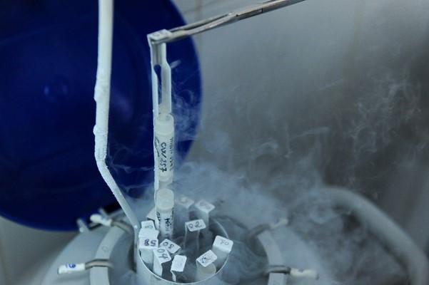 Trữ đông tinh trùng trong nitơ lỏng